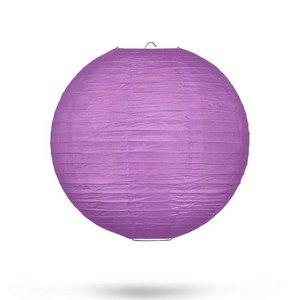Lampion paars 25cm